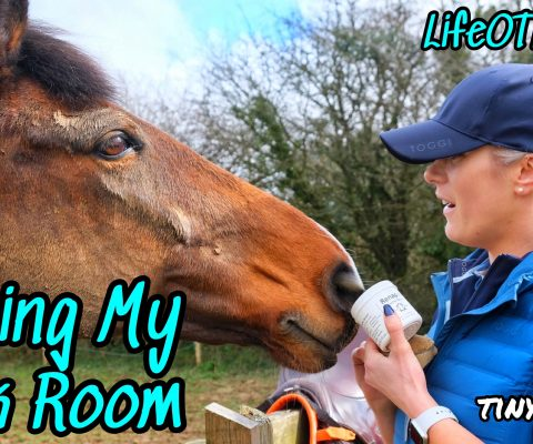 Tidying my Tack a Room | LifeOTLR Weekly Vlog