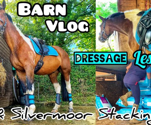 SPEND THE DAY WITH ME!! Dressage Lesson & Silvermoor Stacking | Barn Vlog